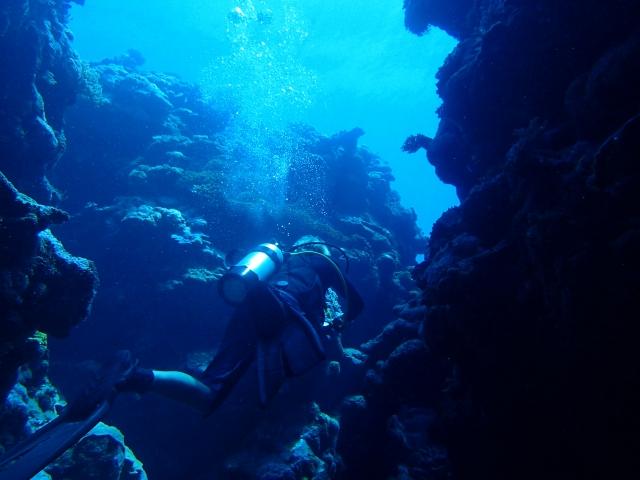 海、スキューバ、ダイビング、沖縄