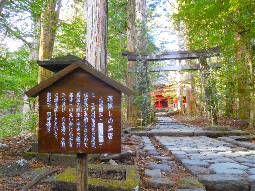 滝尾神社、運試し、鳥居