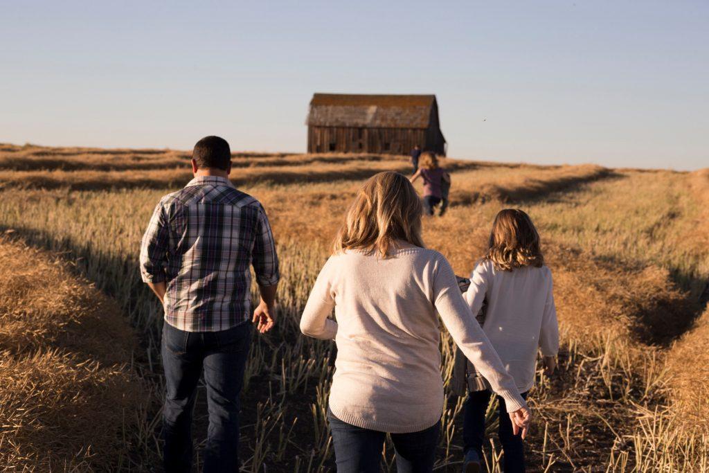 家族、草原、秋、茶色、自然、親子、小屋、空