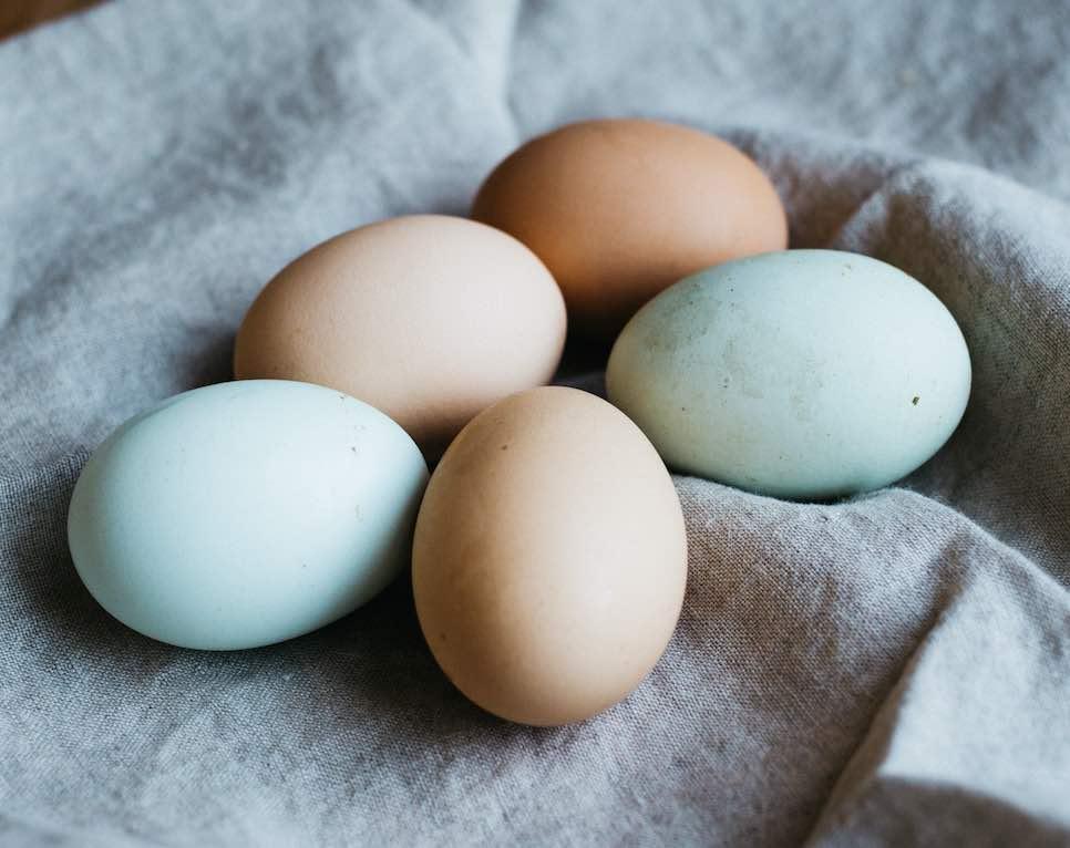 過ごし 採卵 方 後