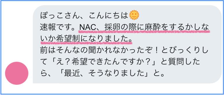 NAC採卵